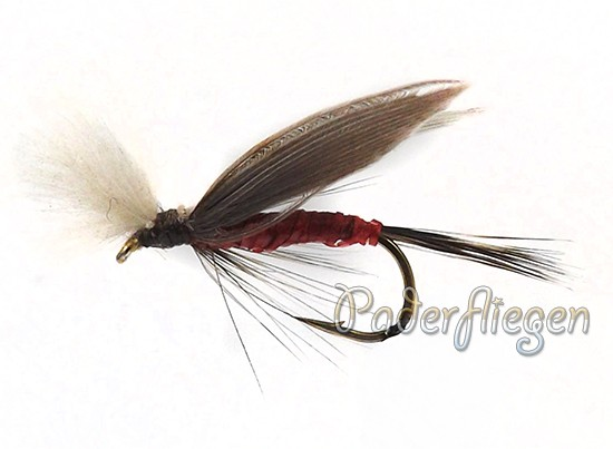 CDC Flashabou Red Female