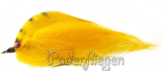 Paderpike Yellow Stripe Giddy