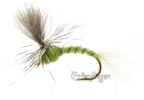 Quill Olive Parachute CDC