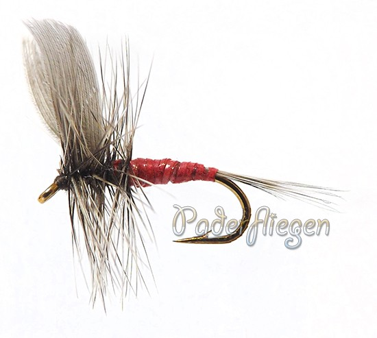 Dry Hackle Red Female