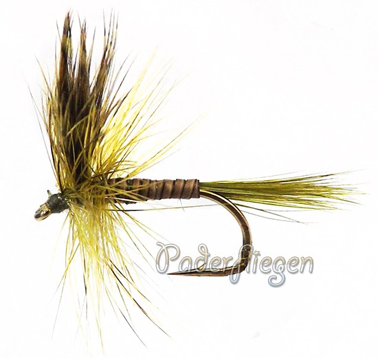 Olive Wing Quill