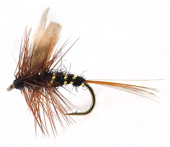March Brown Hackles