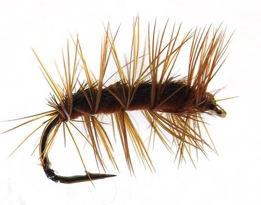 Crackleback brown